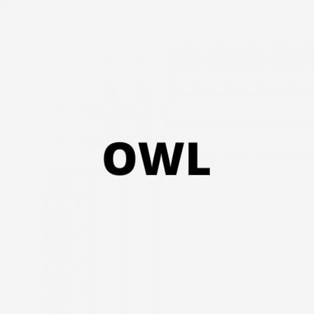 kunde_owl_2
